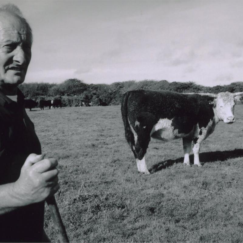 Roy Olds, Mulfra Farm